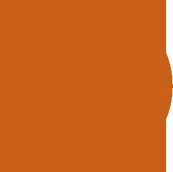 西宇和みかんは、おいしい温州みかんのブランド。Nマークが目印です。