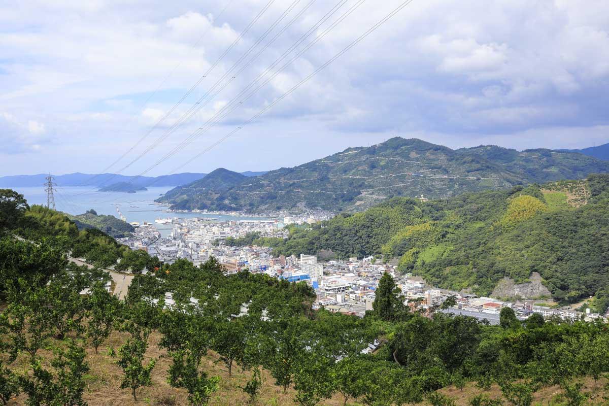 八幡浜市を見下ろす山頂付近