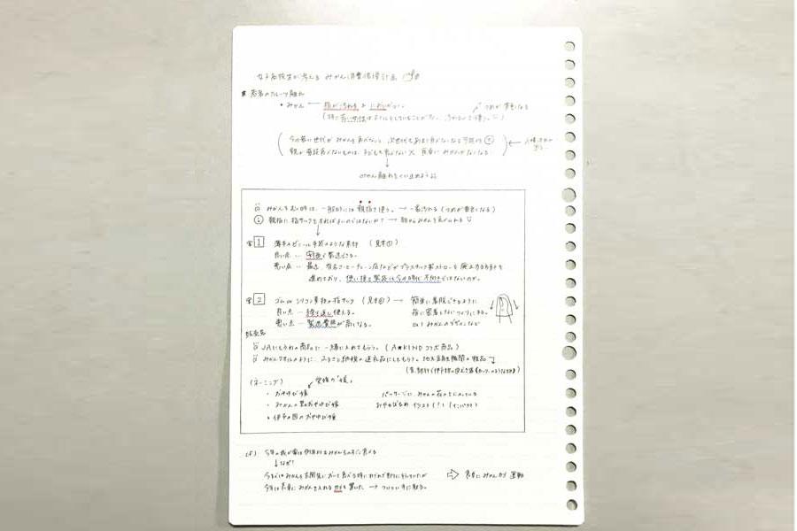 入山さんが部内で提案した時の企画書
