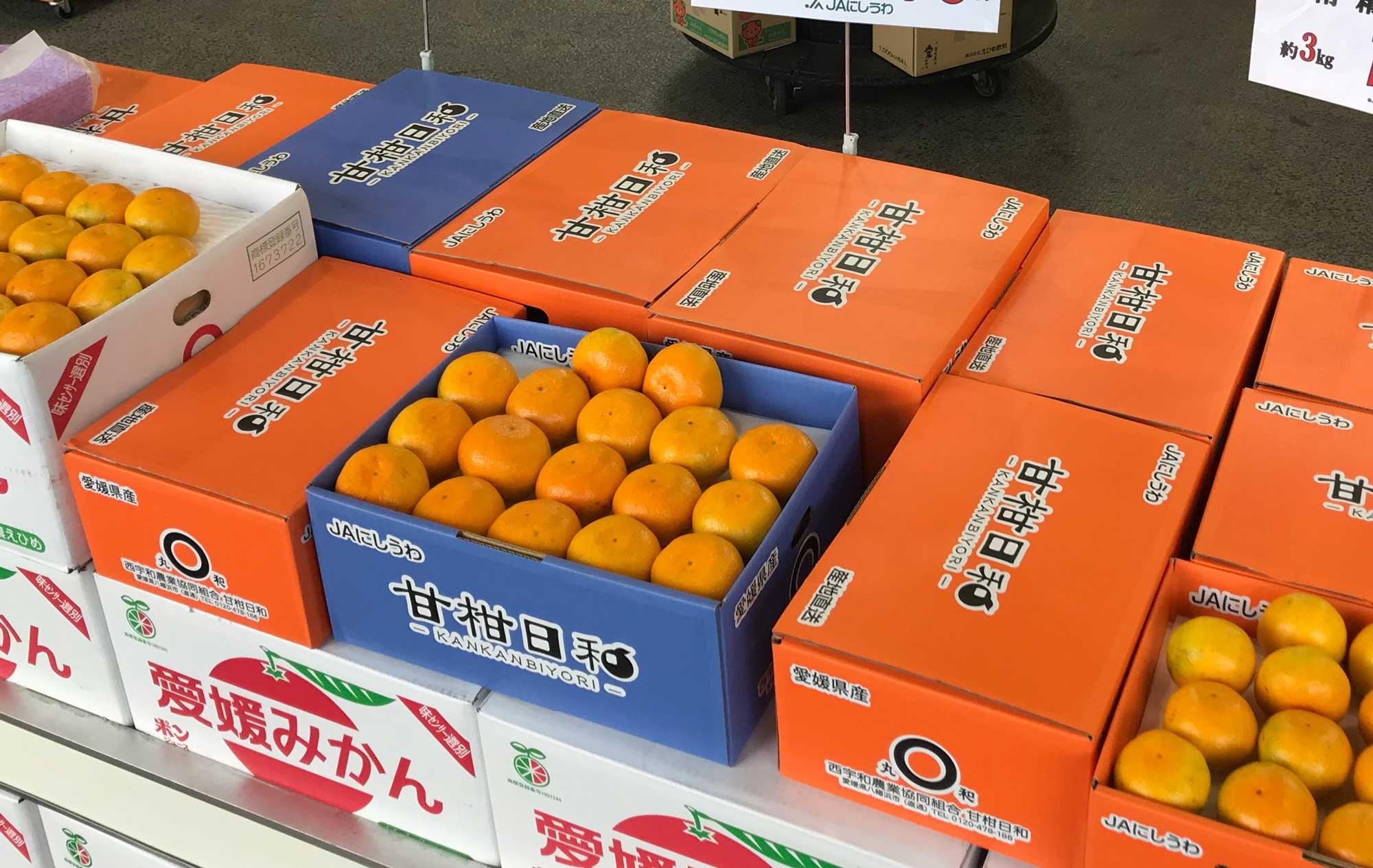 JA直売所「柑甘日和」に並ぶ極早生みかん