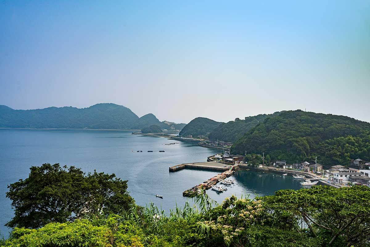 自然豊かな大島