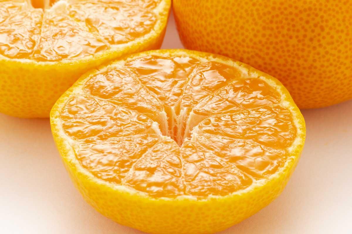 オレンジ色が濃く、皮のキメが細かいもの